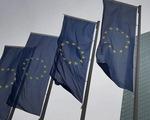 EU ủng hộ điều tra quốc tế về nguồn gốc virus corona