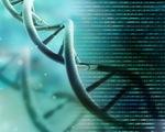 Xét nghiệm gen sẽ xác định nguyên nhân đột tử người trẻ?