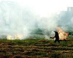 Đốt rơm, chất thải sinh hoạt mịt mù khiến chất lượng không khí