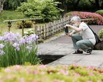 Bảo tàng quốc gia, vườn Hoàng cung Nhật mở cửa trở lại