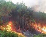 Lại cháy rừng dữ dội trong nắng nóng