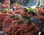 Đề xuất cho thương nhân Trung Quốc mua vải thiều được miễn phí ăn, ở trong 14 ngày cách ly