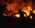Cận cảnh xuyên đêm chiến đấu 'giặc lửa' cứu rừng