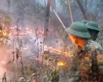 Nắng nóng gần 40 độ C, lo nguy cơ cháy rừng