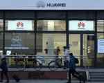Mỹ - Âu bàn về số phận Huawei