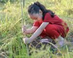 Giáo dục trẻ yêu thiên nhiên qua hoạt động trồng cây gây rừng