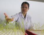 Phụ nữ làm khoa học: Lúc ăn cơm cũng phải làm