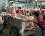 Thành lập đoàn kiểm tra liên ngành mặt hàng thịt heo