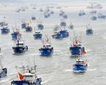 Vét sạch mực ở biển Nam Mỹ, Bắc Kinh áp đặt luôn