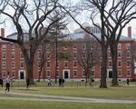 ĐH Harvard, Viện MIT kiện chính sách bắt du học sinh hồi hương là