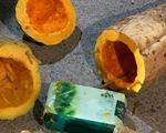 Bắt ổ nhóm giấu ma túy vào quả bí ngô đưa về Hải Dương tiêu thụ