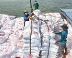 Nhận định '90% người Việt Nam ăn gạo