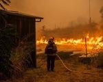 Sét đánh gây 560 đám cháy rừng khắp California, cứu hỏa chật vật vì thiếu người