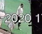 Bé trai 2 tuổi mất tích khi chơi công viên: Camera ghi lại người phụ nữ 2 lần vẫy bé