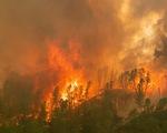Nước Mỹ đối phó thiên tai: bão một bên, cháy rừng một bên