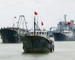 Trung Quốc đang khai thác quá mức ở Biển Đông