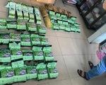 Công an TP.HCM thu 10 khẩu súng, hơn 300kg ma túy trong một quý