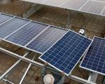 Phút thứ 89 của chính sách, dự án điện mặt trời tăng