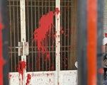 Tạt sơn, ném đá cửa kiếng để đòi nợ ở Bình Hưng Hòa