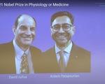 Nobel Y sinh vinh danh 2 nhà khoa học Mỹ khám phá về nhiệt độ và xúc giác