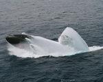 Tàu ngầm Mỹ đã đụng phải gì ở Biển Đông?