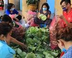 Người trẻ Sài Gòn thuê xe ra tận Hải Dương mua bắp cải về