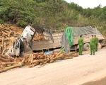 Kiểm tra doanh nghiệp có xe chở gỗ bị tai nạn làm 7 người chết ở Thanh Hóa