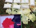Mở 2 bao bố cải thảo bỏ ven đường, thấy 16.000 viên ma túy