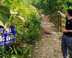 Hà Tĩnh: Nhiều cán bộ xã được giao, cho 'mượn' đất rừng sai quy định