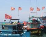 Mở tuyến đường thủy Đà Nẵng - Lý Sơn: Sở từ chối, UBND Quảng Ngãi lại ủng hộ