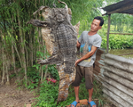 Phát hiện cá sấu 70kg trong vườn nhà, người đàn ông bắt lột da xẻ thịt