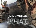 Rủ nhau gửi cây thanh thất đến Ninh Thuận để 'trồng rừng - giữ nước'