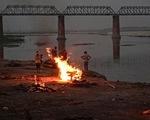 Ấn Độ: Giăng lưới để vớt xác người trên sông Hằng