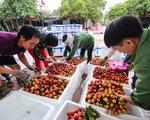 Chủ tịch Bắc Giang đề nghị chống ách tắc nông sản