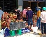 Vải thiều Lục Ngạn - Bắc Giang bị ép giá còn 2.000 đồng/kg?