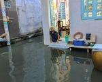 Không mưa, triều cường không lớn nhưng Mễ Cốc ở quận 8 vẫn ngập lênh láng