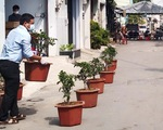 TP.HCM: 12 hộ dân tại điểm phong tỏa thi chăm sóc cây táo