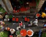 Ấn Độ gia tăng lo ngại về đột biến của biến thể Delta