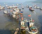 Trung Quốc tạm cấm tàu nước này bắt mực ở Thái Bình Dương, Đại Tây Dương