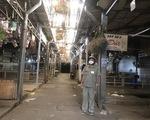 Sở Công thương TP.HCM nói gì về đề nghị mở lại chợ hoa Đầm Sen của Lâm Đồng?
