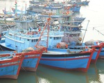 Phó thủ tướng: Tuyệt đối không khai thác hải sản trái phép để bị áp