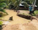Sạt lở bờ sông, chuồng trại, cây cối bị nhấn chìm ở Bến Tre