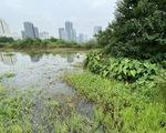 Dự án công viên - hồ điều hòa Cầu Giấy được 'nới' thời gian hoàn thành sau nhiều năm 'đắp chiếu