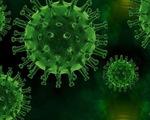 ĐH Chicago: Thuốc masitinib hiệu quả trong điều trị COVID-19