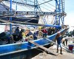 Hoạt động chưa được mấy ngày, cảng cá La Gi lại đóng cửa do dịch