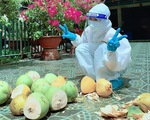 Mừng cả hẻm âm tính, chủ nhà chặt dừa đãi tình nguyện viên