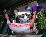 Tàu hỏa chở 300 tấn hàng nhu yếu phẩm người dân tỉnh Hòa Bình gửi tặng TP.HCM