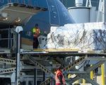 Chuyến bay đưa 277 công dân Việt Nam từ Hoa Kỳ về nước