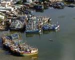 Bà Rịa - Vũng Tàu tạm dừng tàu cá xuất bến để bóc tách F0