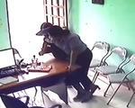 Nữ nghi phạm 34 tuổi dùng dao cướp quỹ tín dụng